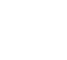 The Web Faerie Logo